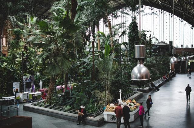 hotel_garden1